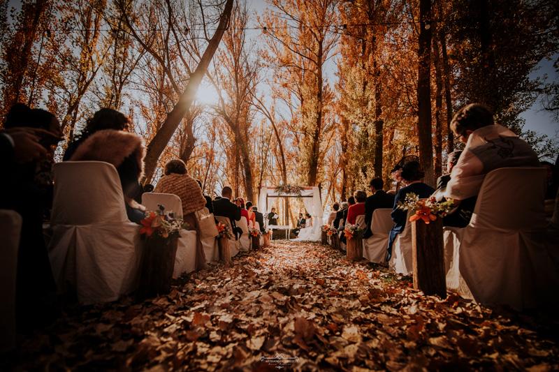Boda de otoño en el bosque
